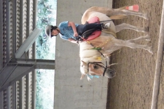 """1° CAMP A CAVALLO per preadolescenti"""