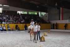 IV° festa delle attività equestri