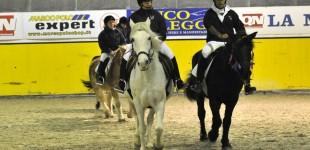 VI° Festa delle Attività Equestri