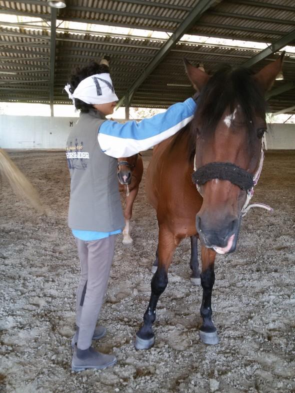giochi di percezione corporea con il cavallo