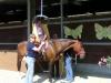 7-finalmente-a-cavallo