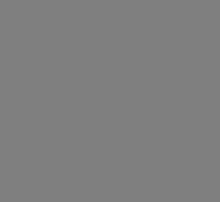 logo fondazione rusconi
